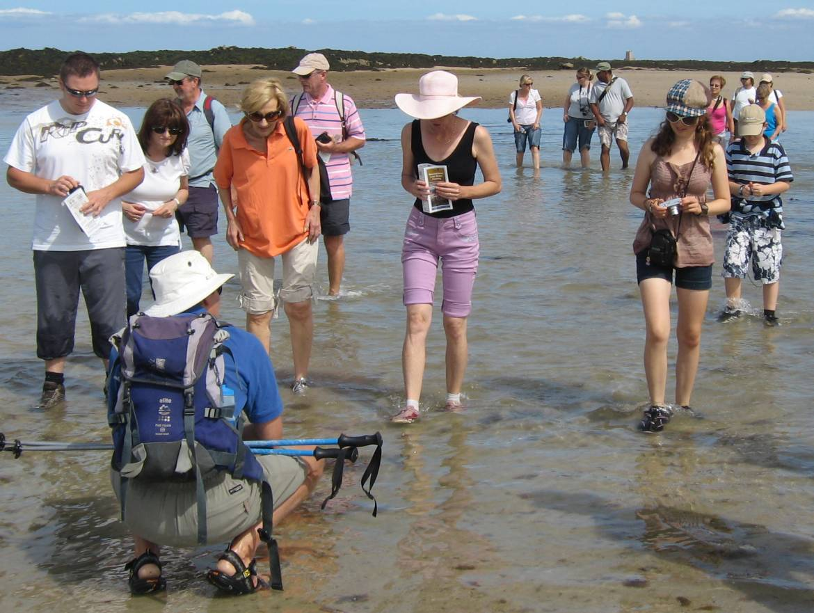 Exploring-the-seabed.-Icho-and-Seymour-walk.jpg