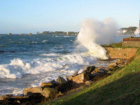 high-tide-0814-11.67m-jersey-.jpg