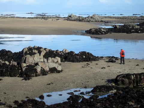 guided-walks-on-the-seabed.Jersey.jpg