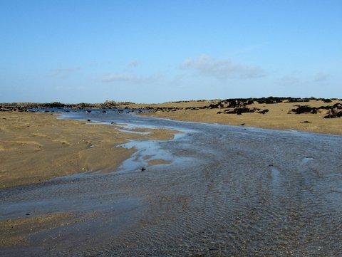 Sea-rivers-in-Jersey-IMG_4621.jpg