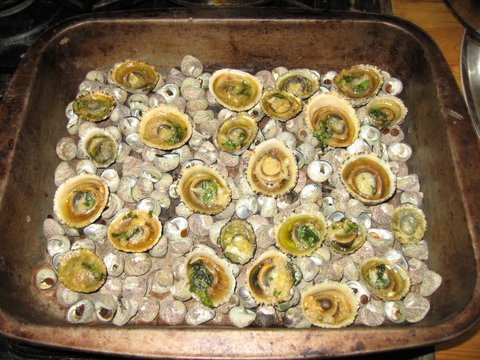 limpets-on-a-base-of-winkles-IMG_7279.jpg