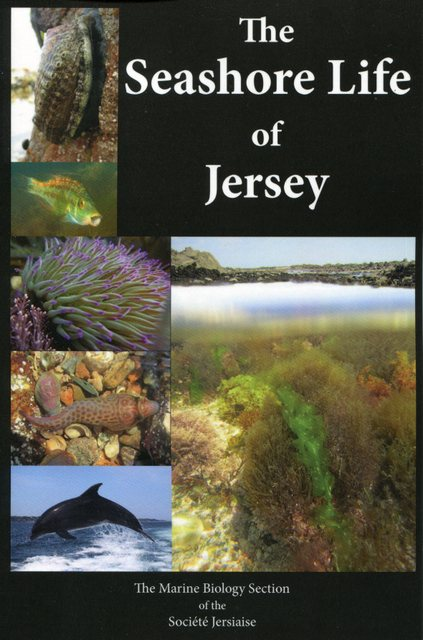The-seashore-life-of-Jersey.-Buy-the-book-here-001.jpg