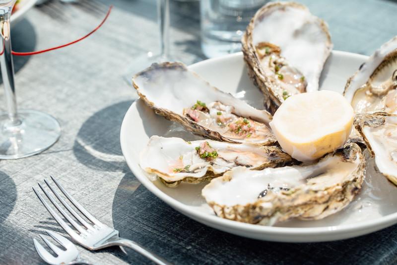 Oyster-walks-in-Jersey-2579-low-.jpg